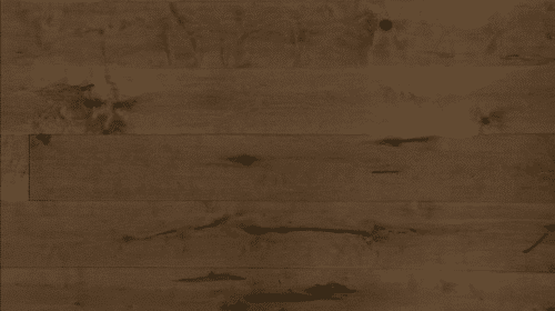 Leo Grandeur Maple Engineered Hardwood Flooring Divine 1