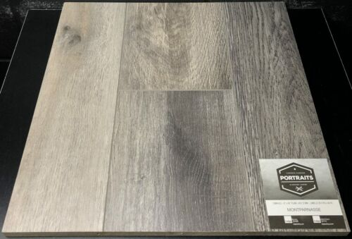 MONTPARNASSE PORTRAITS LAMINATE FLOORING 12MM scaled 1 1